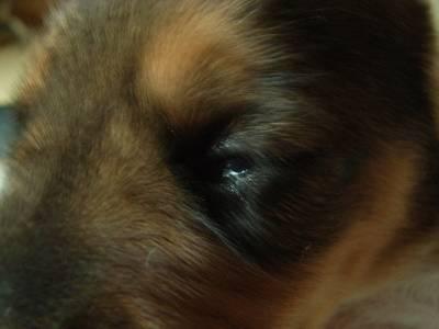23日 ルービックの目